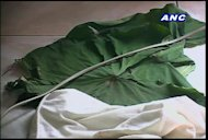 A baby girl was found wrapped in gabi leaves on a roadside in Davao City. For more news, click here.