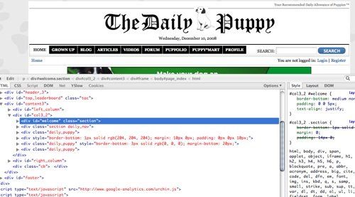 thedailypuppy.com with source code