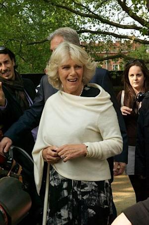 Is Camilla Parker-Bowles so jealous of her younger daughter-in-law she would deserve to be told to stuff it?