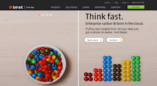 Website Review: 10 Hottest B2B SaaS Companies in 2014 image birst resized 600