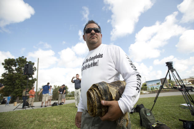 "Trapper ""Python Dave"" Leibman holds a roll of snake skins he is selling at the Python Challenge kick-off in Davie, Fla. Saturday, Jan. 12, 2013. Roughly 2,050 pythons have been harvested in Florida si"