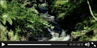 What Web Page Video Player is Right for Your Site? image html5 video player 300x148