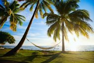 Tourism Marketing: What Now? image palmtrees hammock small 300x200