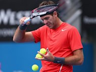 Del Potro improving 'day by day'