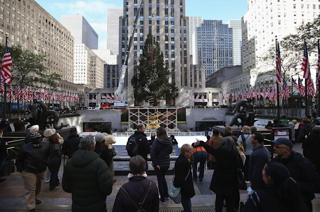 10-Ton Norway Spruce Becomes Rockefeller Center's Christmas Tree