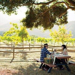 Under-the-radar vineyards