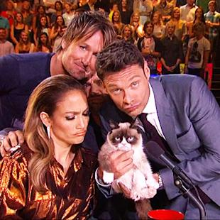 Grumpy Cat on 'American Idol'
