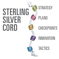 World Class Leadership Skills image stirling silver chord