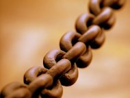 8 Ways To Succeed With WordPress in 2013. image Broad chain closeup 300x225