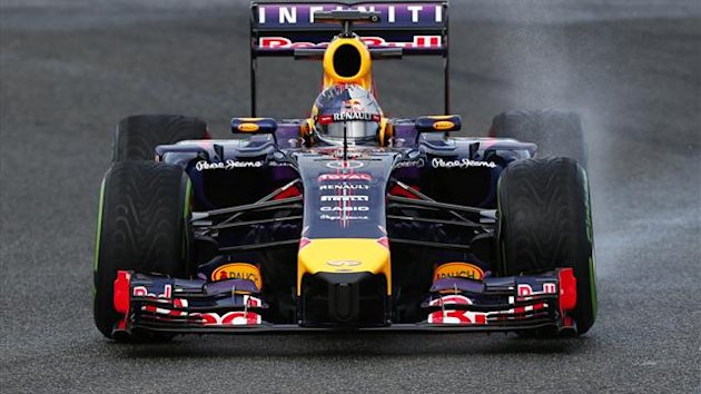 The 2014 Red Bull F1 car