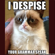 When Grammar and Everyones Favorite Memes Combine image Grumpy Cat Meme 300x3003