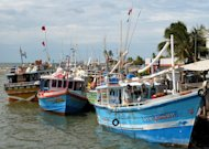 Fishing boats are anchored at the Sri Lankan harbour of Negombo on November 2, 2009. Australian Foreign Minister Bob Carr has announced millions of dollars in aid to boost educational opportunities in Sri Lanka, hoping it will help stem the flow of illegal immigrants from the island