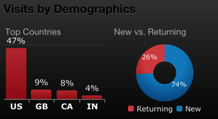 Bring Google Analytics to your iPhone image Demographics