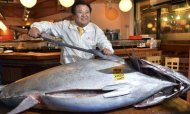 Bluefin Tuna Auctioned For Record \$1.7m