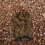 Lost brown glove