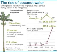 Graphic factfile on coconut production in the Philippines, including exports of dried coconut flesh and coco water. The biggest players in the global beverage industry, including Coca-Cola and Pepsi, have jumped into the coconut water health drink craze in recent years