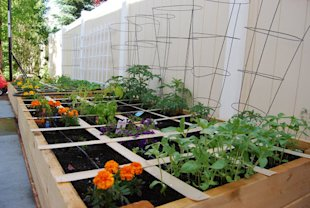How to create a square foot garden ...