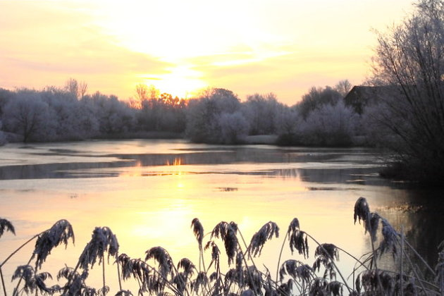 Lodge Lake Frost