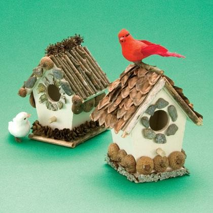 Cozy Bird Cottage