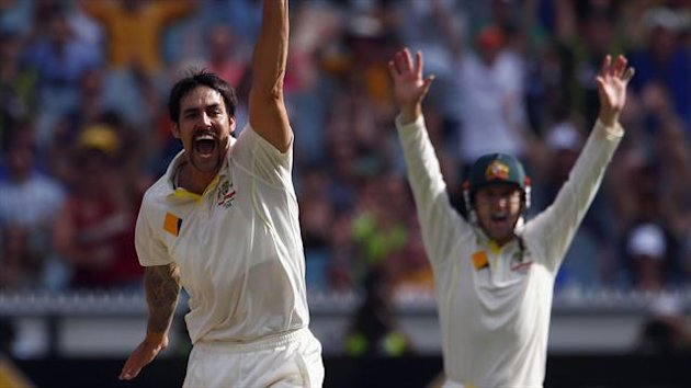 Mitchell Johnson and George Bailey appeal