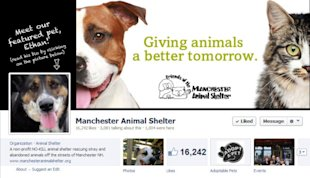 How to Make Images the Right Size for Your Facebook Cover Photo and Profile Photo image Manchester Animal Shelter Facebook 600x345