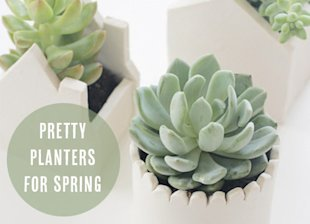 7 easy to make planters for tiny spaces