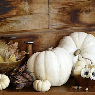 White pumpkins really pop against wood