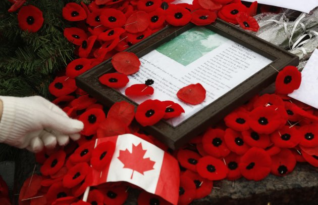A woman places a poppy on the Tomb of the Unknown Soldier on Remembrance Day 2013.