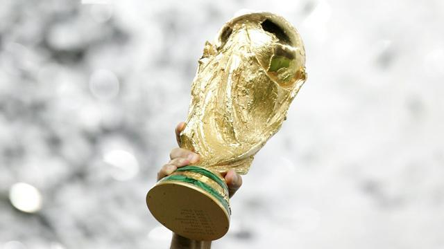 Football - Fans Law on way for 2018 World Cup in Russia
