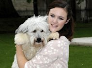 Ashleigh & Pudsey To Judge 'Top Dog Model'. No, Really.