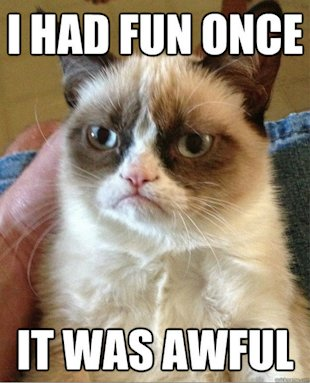 Get to Know the Internet's Most Famous Cats image Grumpy Cat Fun Meme