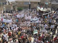 A handout picture released by the Syrian opposition's Shaam News Network shows an anti-regime demonstration in Sermin