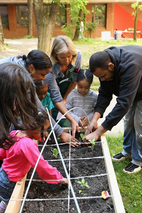 American Heart Association Teaching Gardens Planting In Harlem