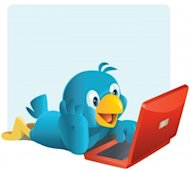 Are Your Customers Tweeting About You? image twitter 300x268