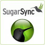 Cloud Storage   A No Brainer For Small Businesses image sugarsync200x200