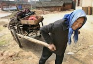 An elderly Chinese woman uses a cart to collect firewood for cooking near the Yangtze river city of Jiujiang in 2007. China's economic growth of the last 20 years has generally been met with declining happiness, especially among the poorest members of society, according to a US analysis published on Monday