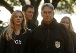 NCIS and Modern Family Are Named World (Ratings) Champions