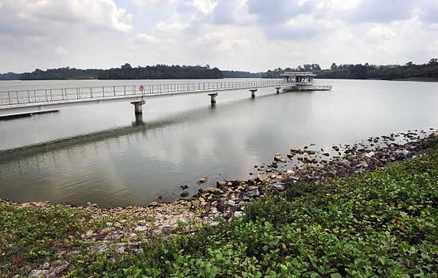 A view of Upper Seletar Reservoir in Singapore. Reservoirs here are partially drying up after Singapore's longest-ever dry spell, which is expected to last through the first half of March. (Getty Images file photo)