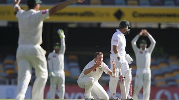 Australia's Peter Siddle (3rd R) reacts after making an unsuccessful appeal for the dismissal of South Africa's Jacques Rudolph during the first Test cricket match at the Gabba in Brisbane (Reuters)