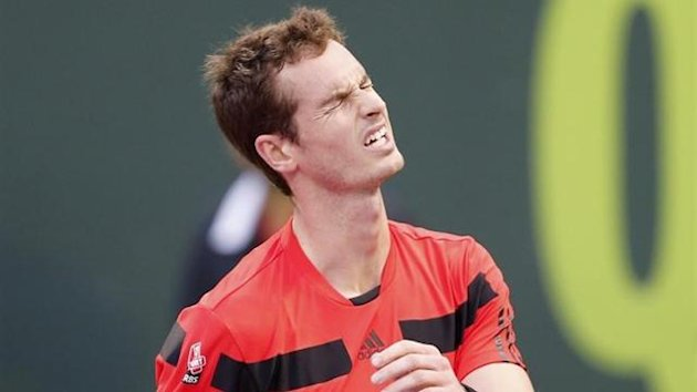 andy murray, florian mayer