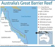 "Graphic showing Australia's Great Barrier Reef. UNESCO has urged decisive action from Australia to protect the Great Barrier Reef from a gas and mining boom, warning it risked being put on its list of world heritage sites deemed ""in danger"""