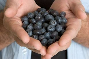 Eating blueberries can reduce men's risk of prostate cancer and heart disease