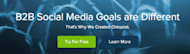 5 Steps to Gaining Leads Through Engaging Landing Pages image B2B goals are different 300x85