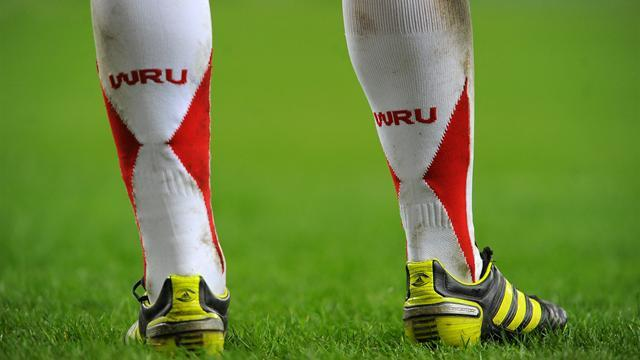 Rugby - Welsh Rugby Union call for central contract talks