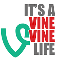 5 Lessons in Using Vine for B2B from General Electric image vine