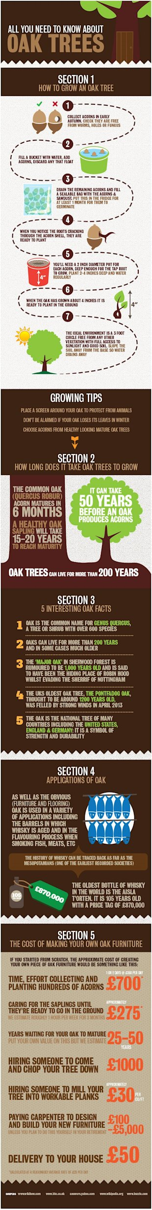 New Furniture: Flat Pack vs Solid Oak vs Grow Your Own image furnitureplusonline oak infographic