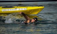 Jellyfish Sting Ends Swimmer's Record Attempt