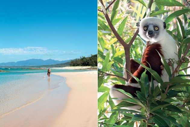 Things to do, Madagascar