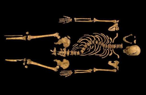 """FILE - This undated photo made available on Monday Feb. 4, 2013 by the University of Leicester, England, shows the remains found underneath a car park in Leicester, which have been declared """"beyond reasonable doubt"""" to be the long lost remains of England's King Richard III, missing for 500 years. Britain's High Court ruled Friday May 23, 2014 that the monarch, who was killed in battle in 1485, should be buried in the city of Leicester, where his skeleton was found under a parking lot in 2012. A group of distant relatives wanted him interred in the northern England city of York, to which he had strong ties. (AP Photo/University of Leicester, File)"""