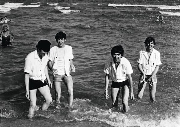 The Water Beatles